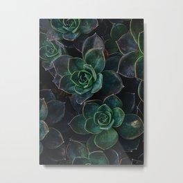The Succulent Green Metal Print