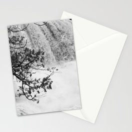 Gooseberry in Black and White Stationery Cards