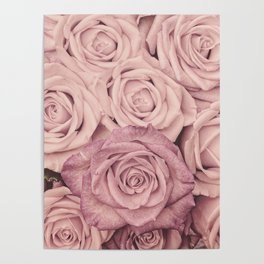 Some People Grumble - Pink Rose Pattern - Roses Poster