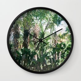 Mexican Palms Wall Clock