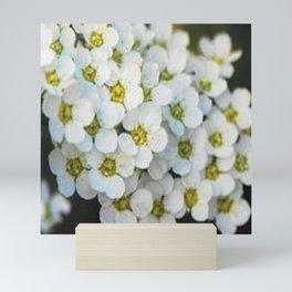 Petals Mini Art Print