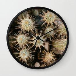 Desert Hedgehogs Wall Clock