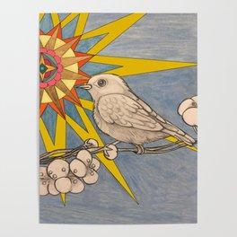 sunbird Poster