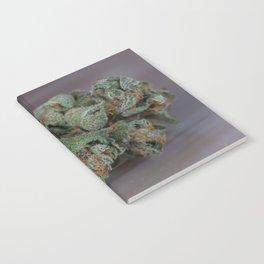 Dr Who Medicinal Medical Marijuana Notebook