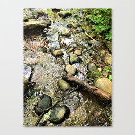 Wildwood Creek Canvas Print