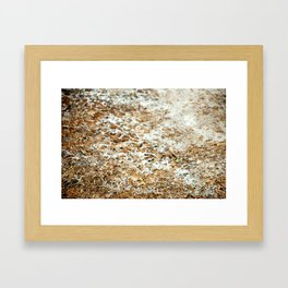 Snow Mold Framed Art Print