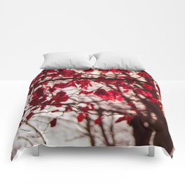 Red Leafs Comforters