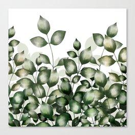 Verdant foliage Canvas Print