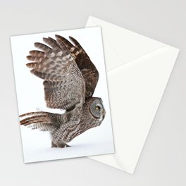 Proceed to runway for take off Stationery Cards