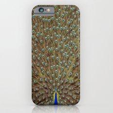 Bird of Paradise iPhone 6s Slim Case