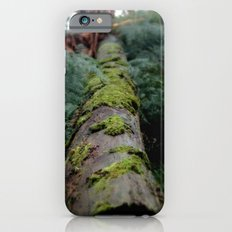 Moss Log - Pyreness Slim Case iPhone 6s