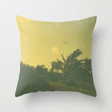 Hawaii Plane - Maui Throw Pillow