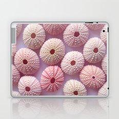 Pastel Urchins  Laptop & iPad Skin