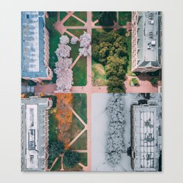UW Cherry Blossoms: 4 Seasons Canvas Print