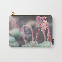 Succulant Beauty Carry-All Pouch