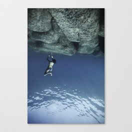 110820-9083 Canvas Print