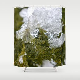 Ice covered Tree Branch Shower Curtain