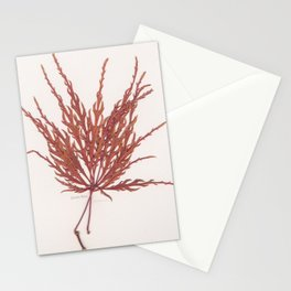 Japanese Maple (red) Stationery Cards
