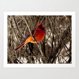 Cardinal Red Bird Winter Rustic Country Art A336 Art Print