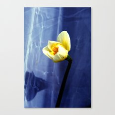 only nature is perfect Canvas Print