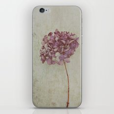 Vintage Hydrangea iPhone & iPod Skin