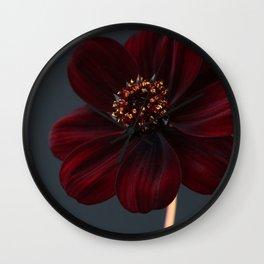 Chocolate Cosmos Flower Wall Clock
