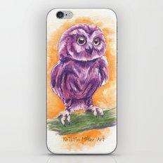 Cute Lil' Ol' Owl iPhone & iPod Skin