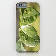 Fresh Dew Drops Slim Case iPhone 6s