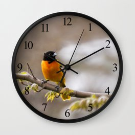 The Colors of Spring Wall Clock