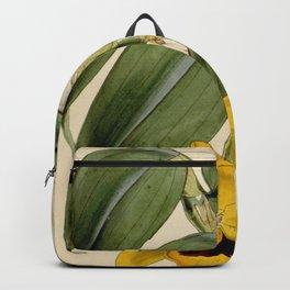 Curtis's botanical magazine (Tab. 4450) (8411690350) Backpack