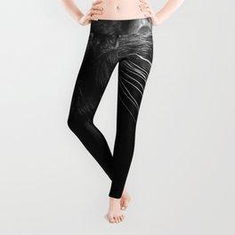 Black Cat Whiskers Leggings