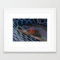 trout Framed Art Prints featuring Trout by Tyler Shaum