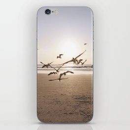Birds in Flight iPhone Skin
