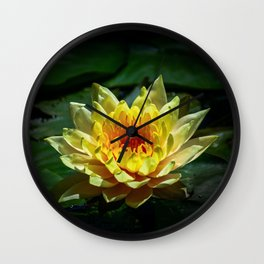 Yellow water lily Wall Clock
