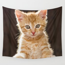 Play Time Kitten  Wall Tapestry