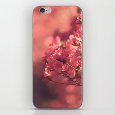 Pink Hues iPhone & iPod Skin