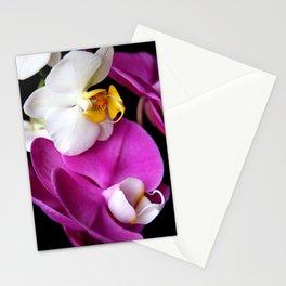 Lip Sync Stationery Cards