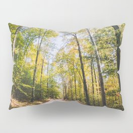 Forest Road - Muir Valley, Kentucky Pillow Sham