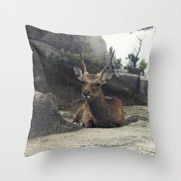 Deer on Rock Throw Pillow