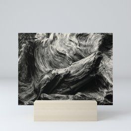 Etched by Nature Scarred by Man bw Mini Art Print