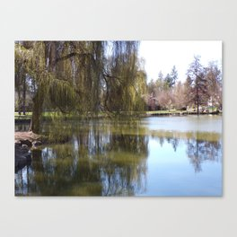 Old Weeping Willow Tree Standing Next To Pond Canvas Print