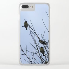Winter Birds on Bare Branches Clear iPhone Case