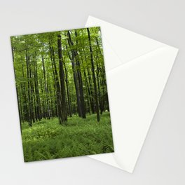Midst of Summer Stationery Cards