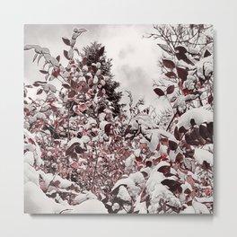 Fresh Snow On Red Leaves Metal Print