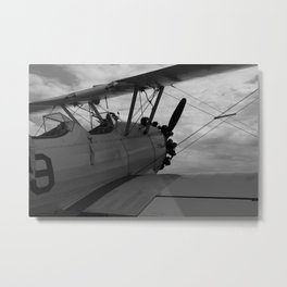Come Fly With Me! Metal Print