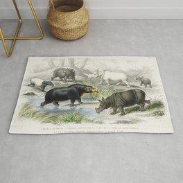 Hippopotamus Indian Rhinoceros Muchoco White Rhinoceros Two Horned African Rhinoceros and Malay Tapi Rug