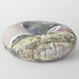 Once Upon a Snow Bird: Junco Floor Pillow