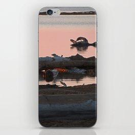 Swan or Driftwood iPhone Skin