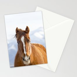Beautiful Mountain Horse Stationery Cards