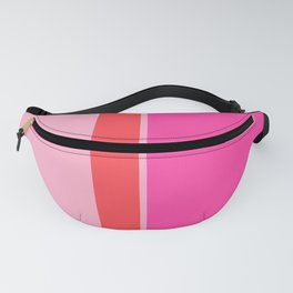 Color Block 20 Fanny Pack